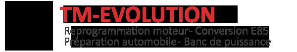 Optimisation Moteur et reprogrammation moteur à Cognac avec TM EVOLUTION